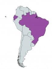УниПОС държави в Южна Америка